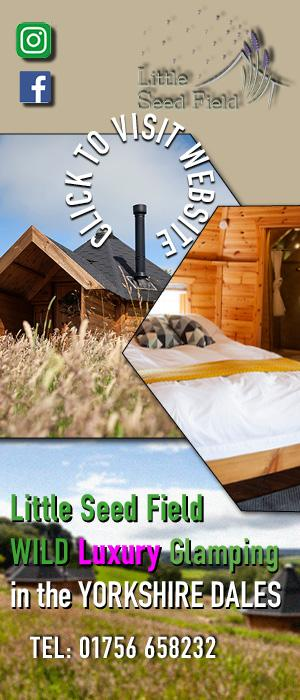 LittleSeed Glamping right banner